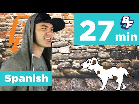 Spanish grammar and vocabulary for beginners with BASHO & FRIENDS - Compilation