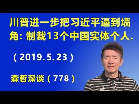 川普进一步把习近平逼到墙角:美国宣布制裁13个中国实体和个人.(2019.5.23)