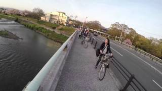 Cycling in Kyoto, Japan (best cycler in the world) 🇯🇵🇯🇵🇯🇵