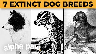 7 Extinct Dog Breeds You Didn't Know Existed