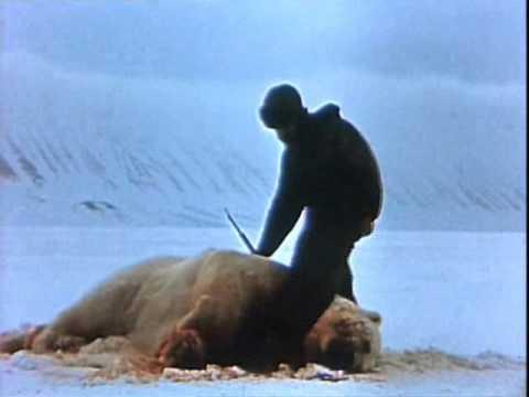 El Oso Polar - Documental (demo) (Cazadores)