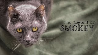 The Legend of Smokey