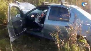 Два человека погибли за минувшие сутки в ДТП на дорогах Новгородской области
