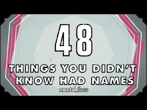 48 Names For Things You Never Knew Had Any