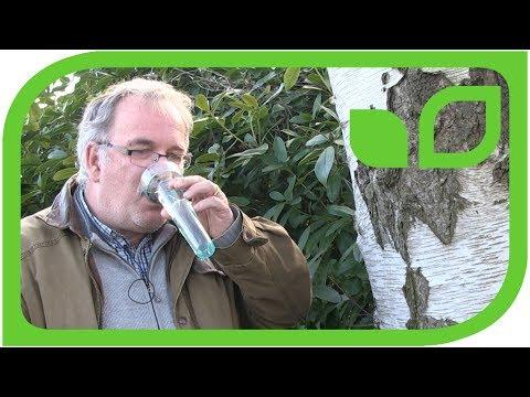 Das Mittel gegen die Zellulitis aus dem Honig und den Kaffee