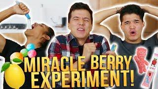 MIRACLE BERRY EXPERIMENT ft ALEX WASSABI (SOUR TEST)