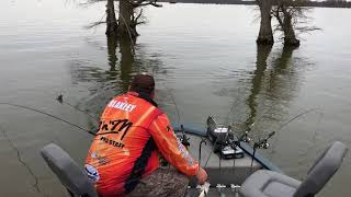 Spider Rigging for Crappie