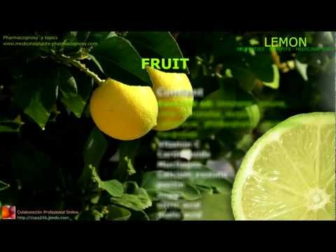 Video Lemon benefits.Uses and medicinal properties of lemon tree