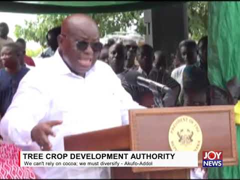 TREE CROP DEVELOPMENT AUTHORITY: We can't rely on cocoa; we must diversify - Akufo-Addo