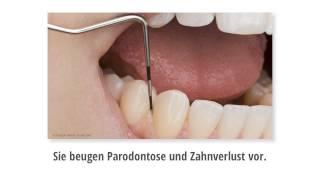 preview picture of video 'Professionelle Zahnreinigung (PZR) Eichenau'