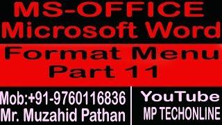 MS-Word 2003 Format Menu Part 11