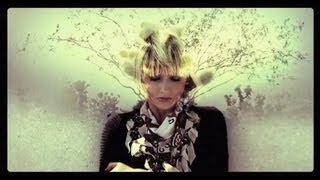 The Joy Formidable - Cholla [Official Music Video]