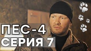 Сериал ПЕС - 4 сезон - 7 серия - ВСЕ СЕРИИ смотреть онлайн | СЕРИАЛЫ ICTV