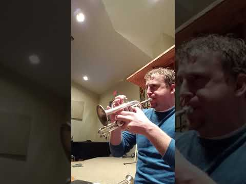 A sample of some piccolo trumpet playing from Bach's Christmas Oratorio. Enjoy!