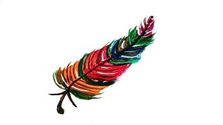Feather Drawing With Watercolor