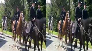 preview picture of video 'Osterreiten in Cölln bei Bautzen in 3D'
