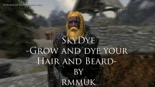 Another Skyrim Mod Review - SkyDye by rmmuk