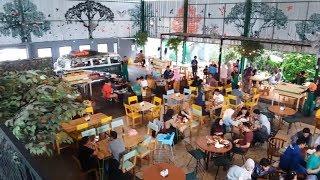 Foresthree, Restoran Bernuansa Hutan di Tengah Kota