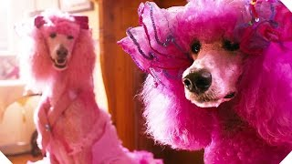 PUDSEY THE DOG: The Movie TRAILER (2016) by Fresh Movie Trailers