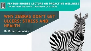 "Thumbnail of ""Why Zebras Don't Get Ulcers: Stress and Health"" by Dr. Robert Sapolsky (Short) video"