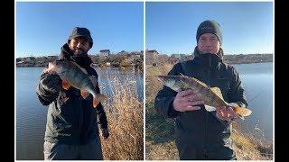 Водоем для рыбалки одесса