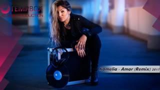 Kamelia  AMOR Full  Remix & Bass 2017 Production