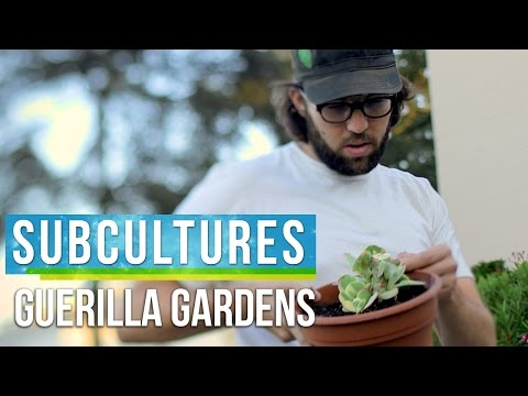 SubCultures | Guerrilla Gardening in Los Angeles