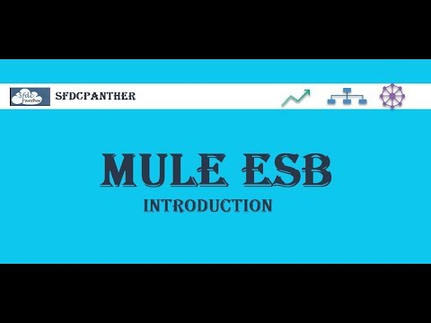 Download What Is Mulesoft Video 3GP Mp4 FLV HD Mp3 Download
