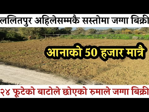 जग्गा बिक्री ललितपुरमा|Land sale in lalitpur|ghar jagga nepal|hamrobazar |urgent house sale in ktm