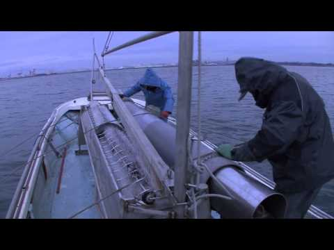 [Sea and Work] Hoshi Seaweed Shop (Part 2)