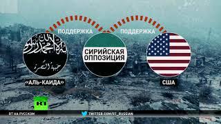 Спонсор терроризма по версии США: борьба с «Аль-Каидой» не спасла Иран от обвинений Вашингтона