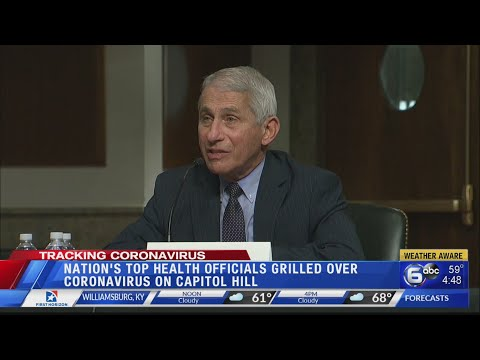 'You are not listening:' Fauci loses patience with Rand Paul in Senate COVID hearing