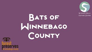 Bats of Winnebago County