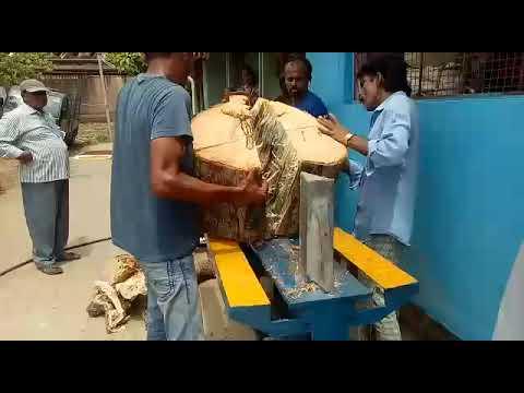 Hydraulic Wood Cutting Machine