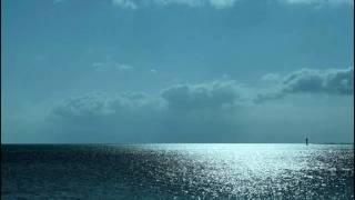 For My Wedding - Don Henley.wmv
