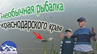 Рыбалка выселки краснодарский край о рыбалке