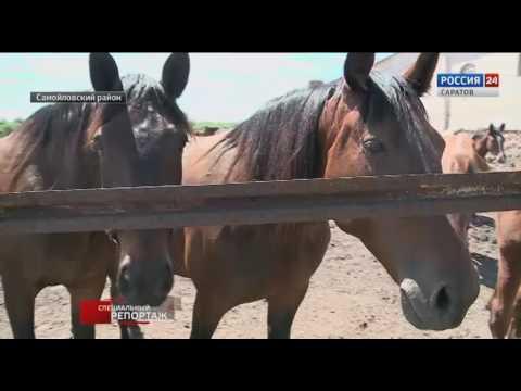 Фильм цыганское счастье актеры и роли 2016
