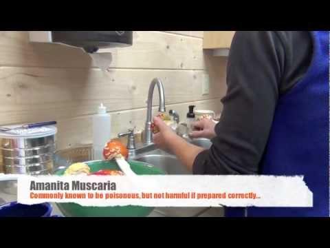 Pag-aalis ng mga spot edad sa harap ng liquid nitrogen