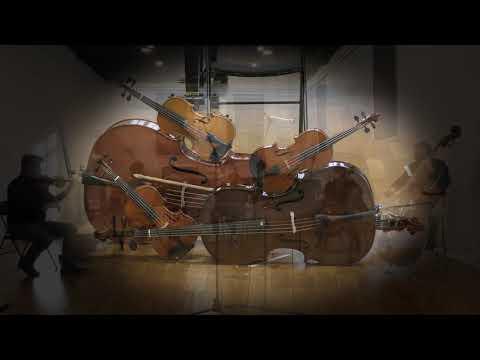 Vidéo - présentation d'instruments : les cordes frottées
