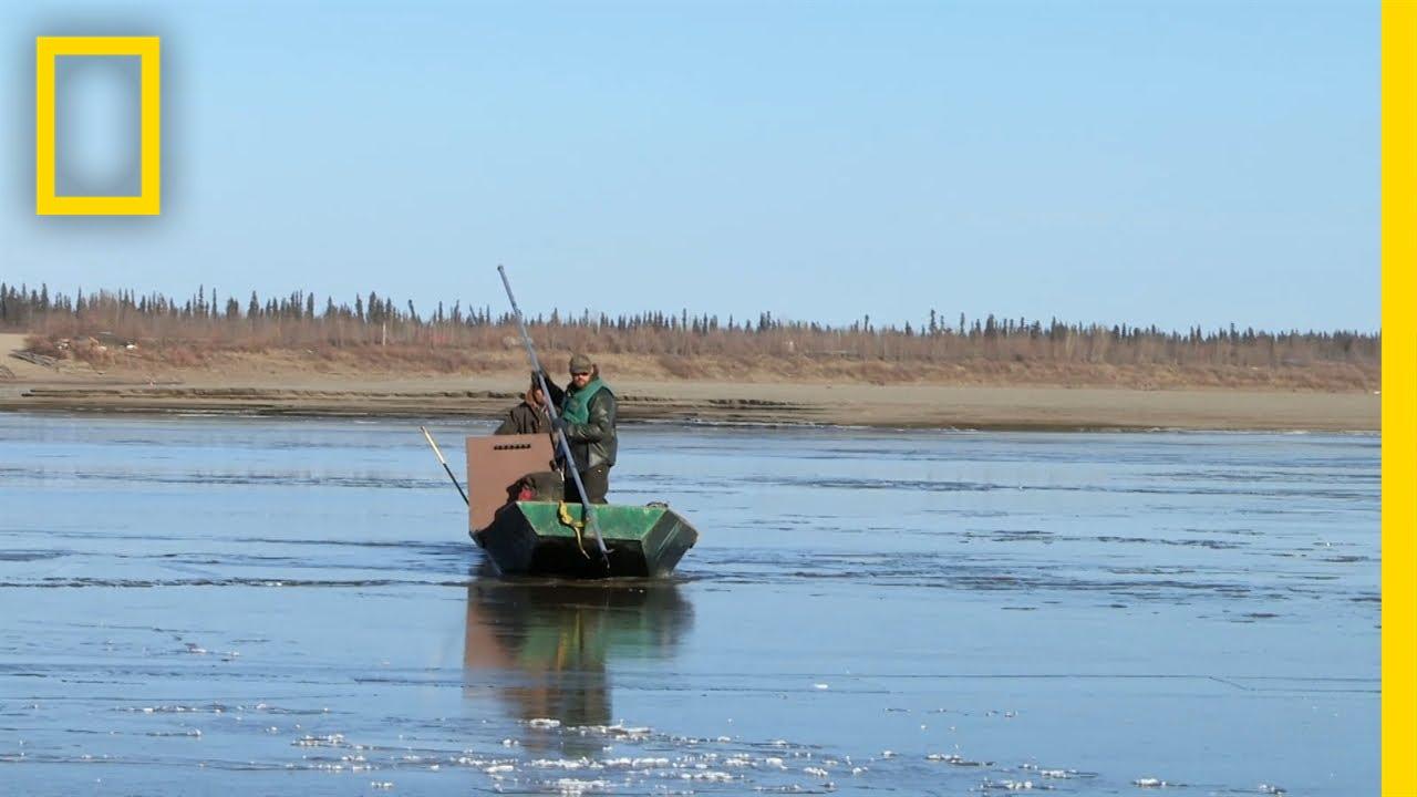 Frozen | Yukon River Run thumbnail