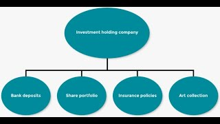 How To Build A Great Holding Company For Business!