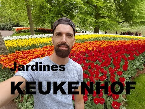 Una vuelta por los Jardines de Keukenhof