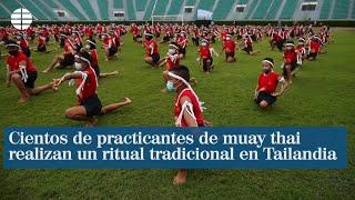 Cientos de practicantes de muay thai realizan un ritual tradicional en Tailandia