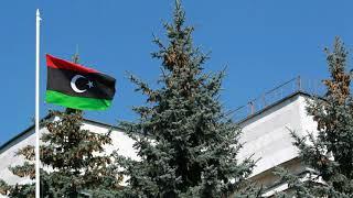 Россия помогла освободить белорусского военного после 6 лет плена в Ливии