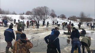 Рыбалка и рыба в рязанской области