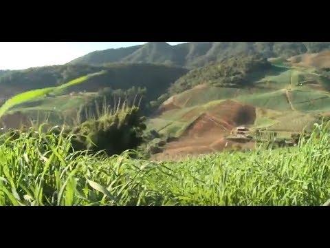 Agricultura de Montanha: experiências da Região Serrana