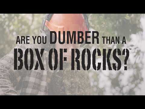 Youtube Video for Are you Dumber than a Box of Rocks?