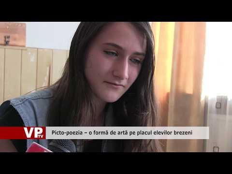 Picto-poezia – o formă de artă pe placul elevilor brezeni