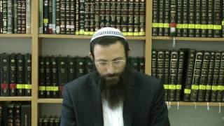 """הלכות  שמחות יו""""ד סימן שמא סע' א-ו  הרב אריאל אלקובי שליט''א"""