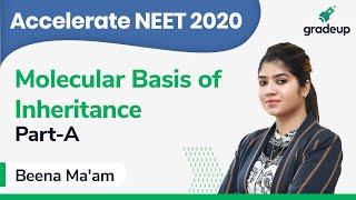 NEET 2020 | Class 30 | Botany | Molecular Basis of Inheritance